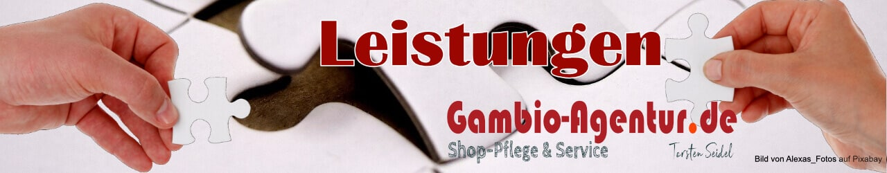 Leistungen onlineshop-strategie