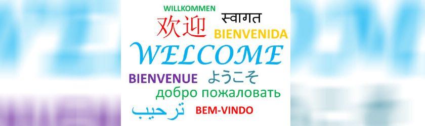 Onlineshop in mehreren Sprachen